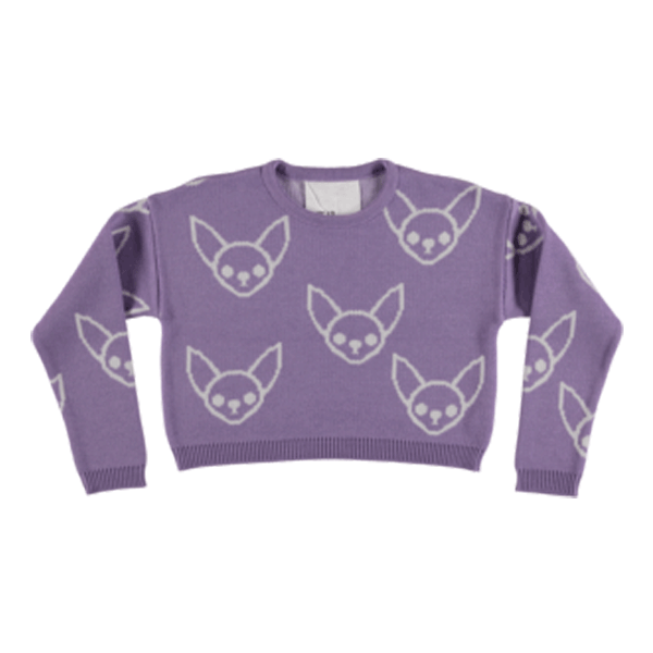 Cold Dog Sweater ▲ Chihuahua