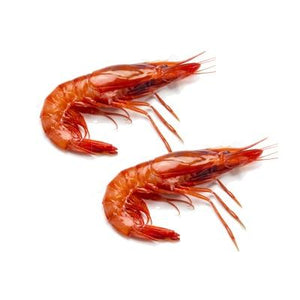 Mmmediterranean Wild Red Shrimp from Palamos, 2.2 lbs