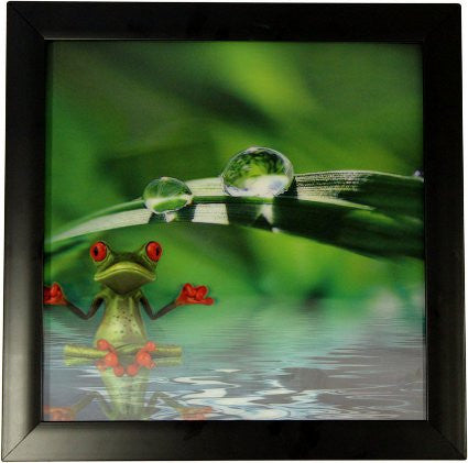 Iconic 3D 30x30cm - Spa Frog - Shopy Max