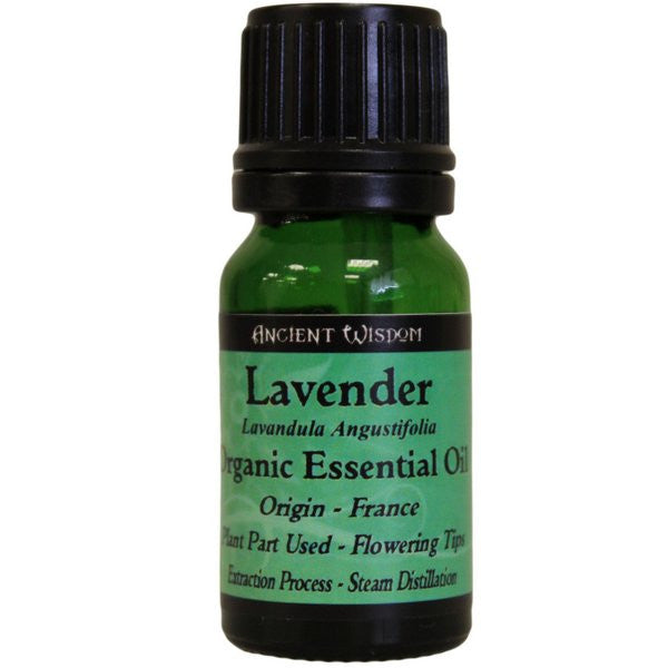 Lavender Organic Essential Oil - Shopy Max