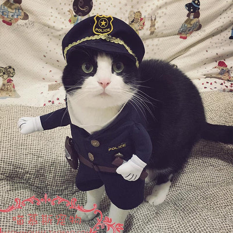 Funny Halloween pet cat dog police costume cosplay with dog police hat small dog puppy
