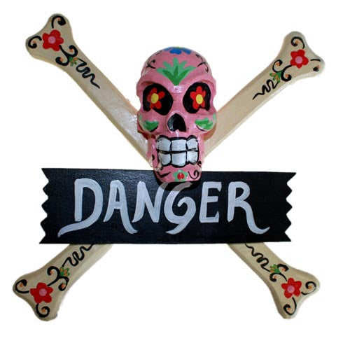 Skulls Warning Sign - DANGER - Shopy Max