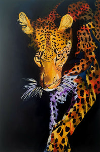 Leopard in Shadows