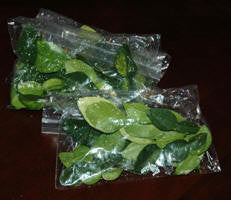 Kaffir (wild lime) leaves