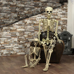 SpookyBones™️ Skeleton Prop Decor - Small Size - Sparbi.com