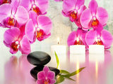 Diamond Painting Orchid  Kit
