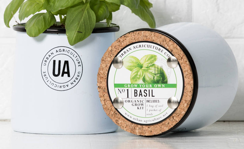 Basil Enamel Herb Grow Kit