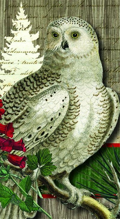 Winter Woods Owl Guest Paper Napkins