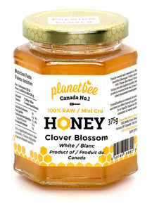 Premium Clover Blossom Honey Canada Raw