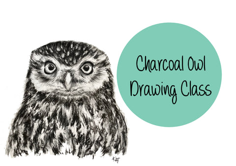 Charcoal Owl Drawing Class