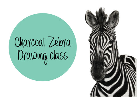 Charcoal Zebra Drawing Class
