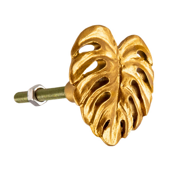 Gold Monstrea leaf Brass effect Drawer furniture Knobs