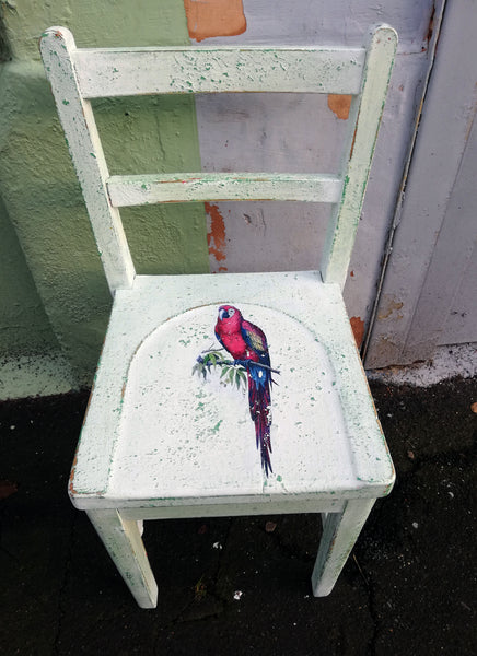 Little children's school chair transformed with saltwash with a vintage parrot design