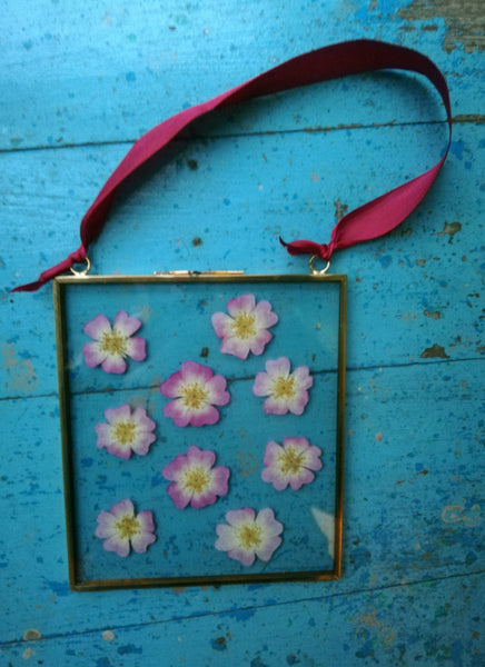 Pressed Flower Glass Frames.