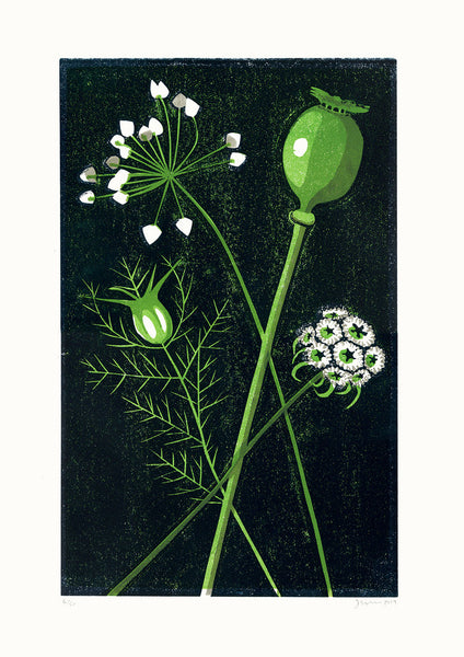 Seed Heads STILL LIFE LINO PRINT by James Brown