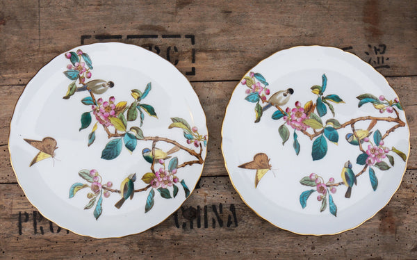 Beautiful and unusual vintage birds and blossom dinner / cake plates .stunning colours and great condition.