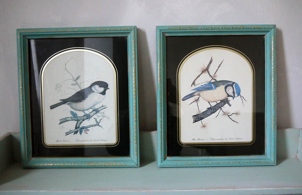 Set of Two vintage framed bird prints