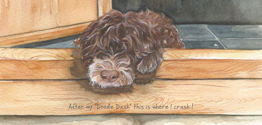 """After my ""Doodle Dash"" this is where I crash""  scruffy mutts greeting card"