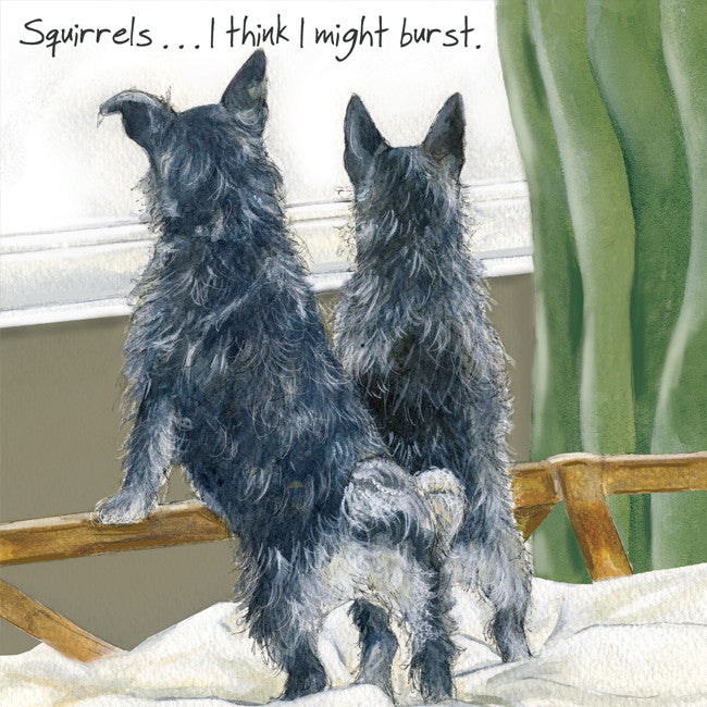 """Squirrels, I think I might burst"" greeting card"