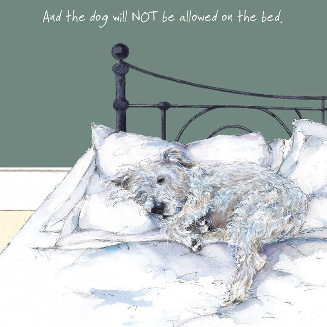 """And the dog will NOT be allowed on the bed!"" greeting card"