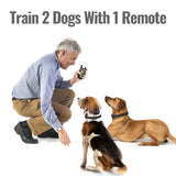DogCare WELL-D Standard Shock Dog Training System (TC08) - Official DogCare®  Website