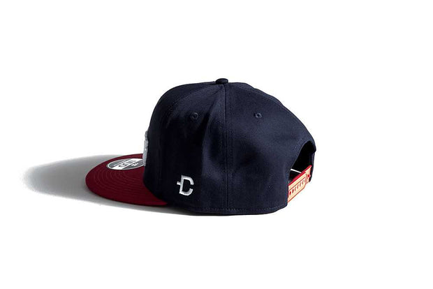 DirtCult Santa Monica Snapback