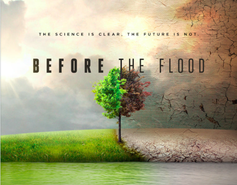 Thoughts 'Before the Flood'