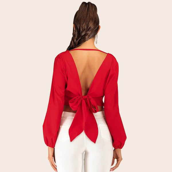 Lantern Sleeve Blouse Plus Size - red back