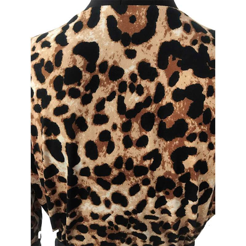 Leopard Print Two Piece - back side view