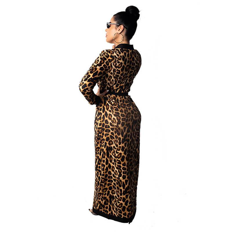 Leopard Print Two Piece - Back view