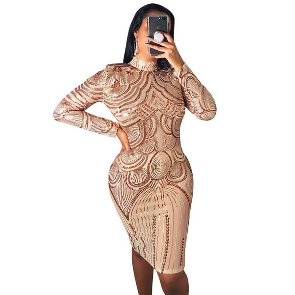 Sequined High Neck Long Sleeve Women Dress