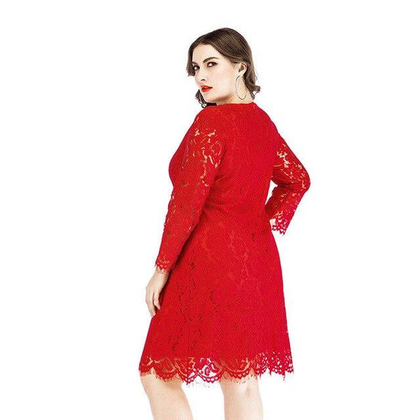 Plus Size Sexy Lace Dress