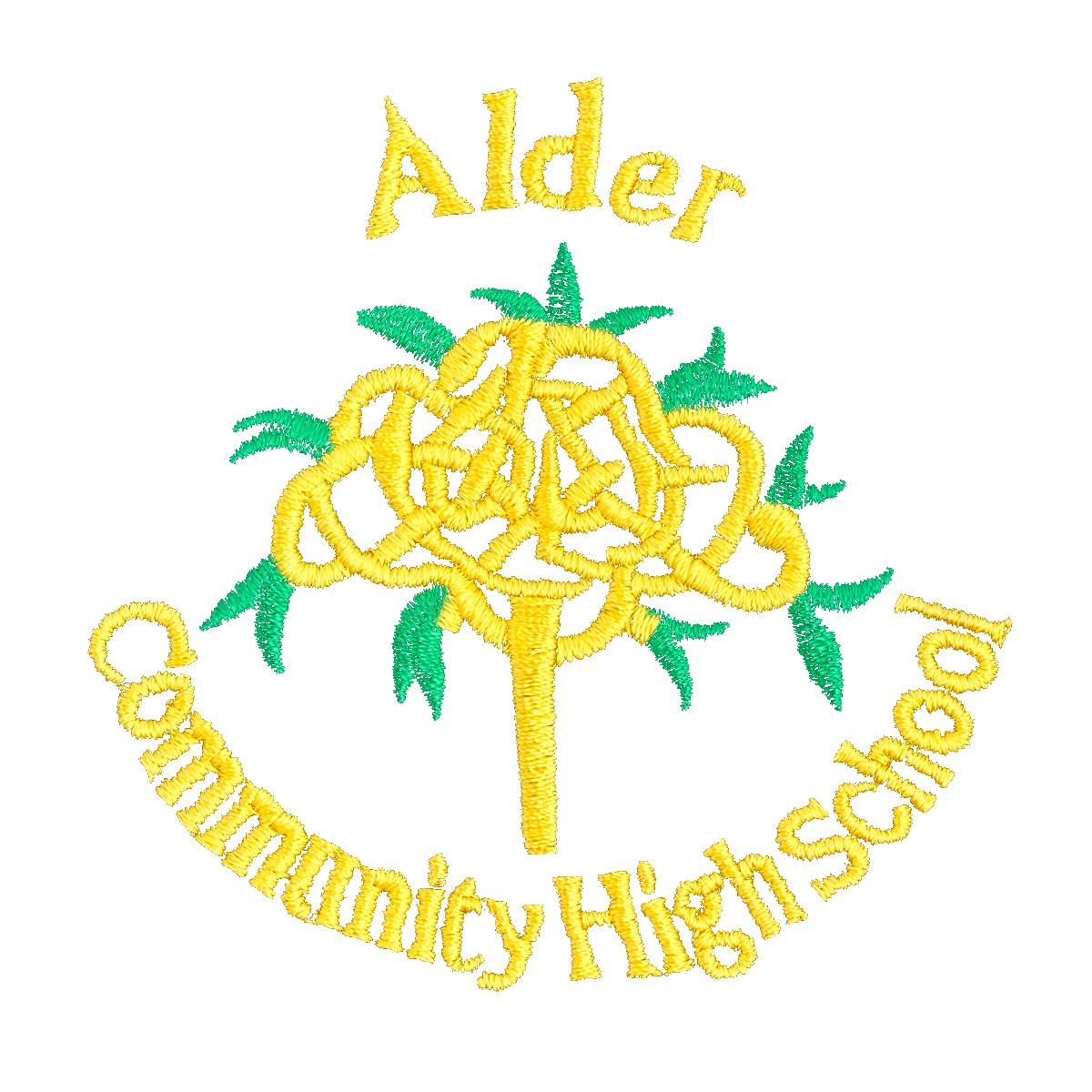 Alder High Community School