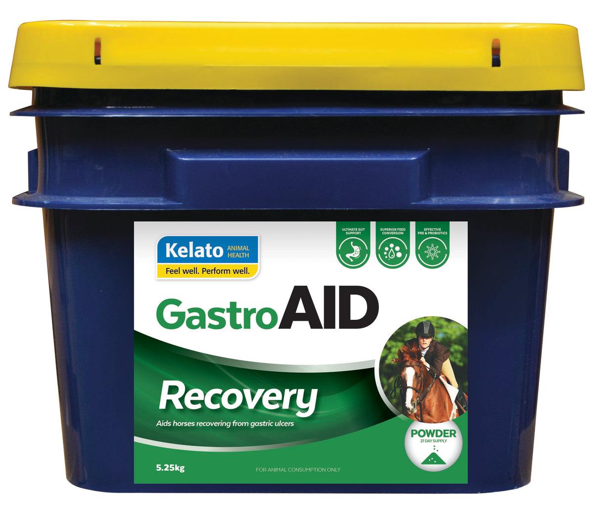 GASTRO AID RECOVERY