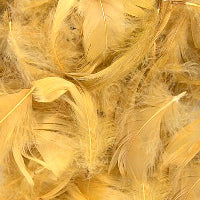 GOLD ELEGANZA FEATHERS MIXED SIZES 3