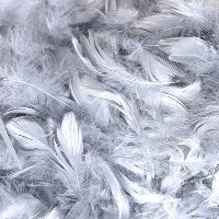 "SILVER ELEGANZA FEATHERS MIXED SIZES 3"" - 5"" (50G BAG)"