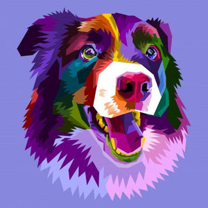 ArtBox BORDER COLLIE
