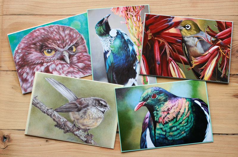 Native Bird Cards collection 1