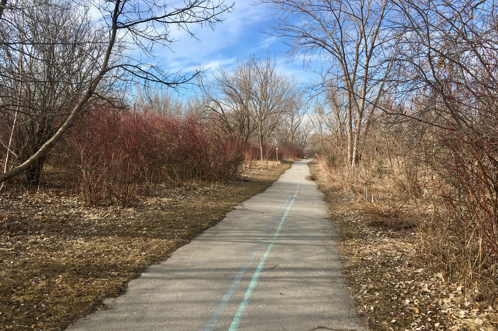 Rollerblading on the Martin Goodman Trail near Cherry Beach