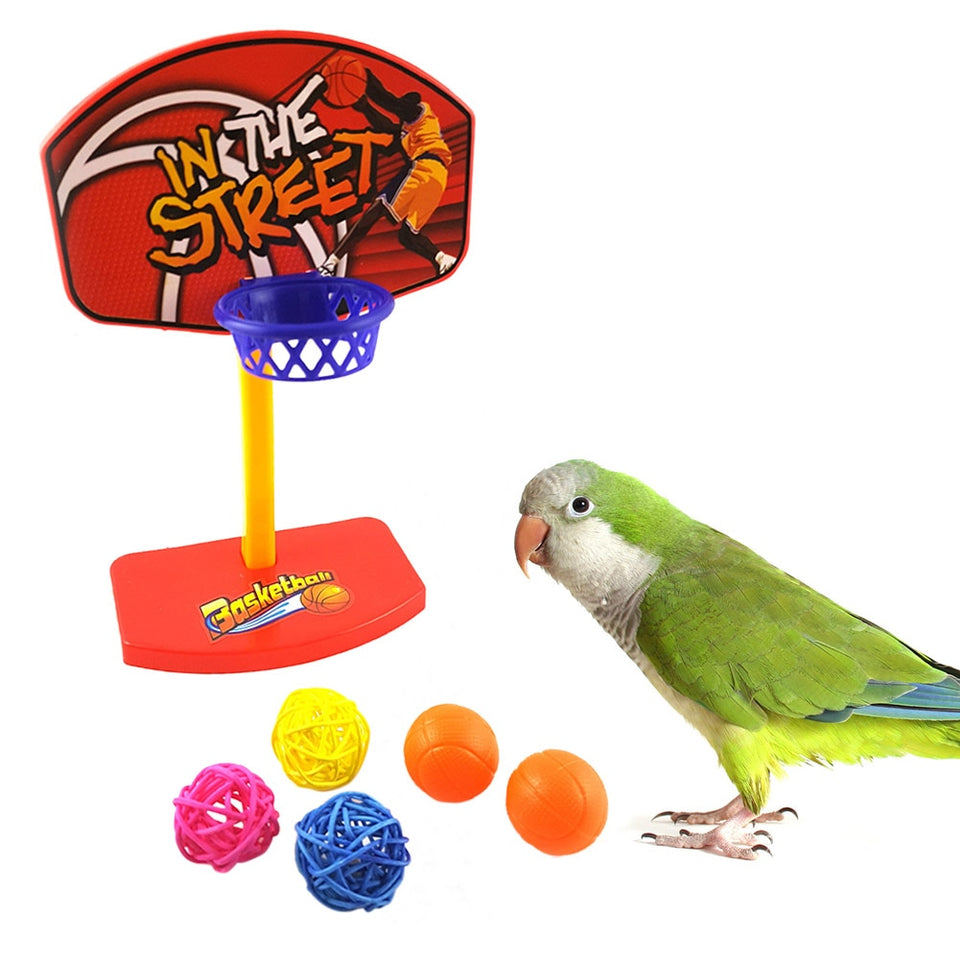 5pcs Balls Parrot Chew Toy Parakeet Bell Balls Pet Birds Toys Birdie Basketball Hoop Props Parrot Pet Products Supplies