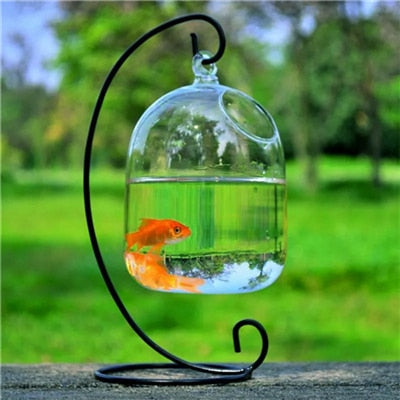 Clear PETFORU 15cm Height Hanging Glass Aquarium Fish Bowl Fish Tank Flower Plant Vase with 23cm Height White Rack Fishbowls