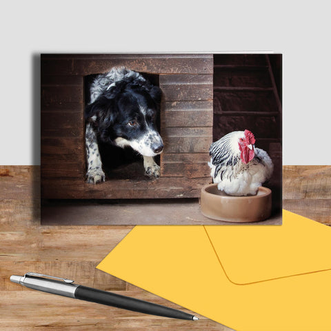 Border collie and hen greetings card - Early morning breakfast call - Kitchy & Co