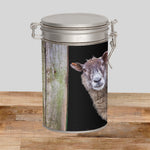 Border Collie & Sheep Storage Tin - Look out ! She's behind ewe - Kitchy & Co