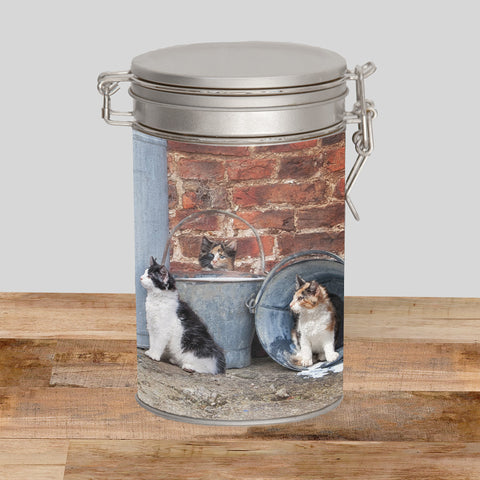 Border Collie & Cats Storage Tin - Cats that got the cream - Kitchy & Co