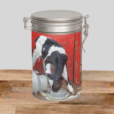 Dairy Calves Storage Tin - Double trouble at the Dairy - Kitchy & Co