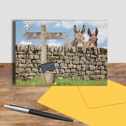 Donkey greetings card - Dandy and Buttercup - Kitchy & Co