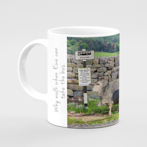 Herdwick Sheep Mug - Why walk when you can take the bus - Kitchy & Co