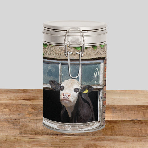Hereford cows Storage Tin - Free samples welcome - Kitchy & Co