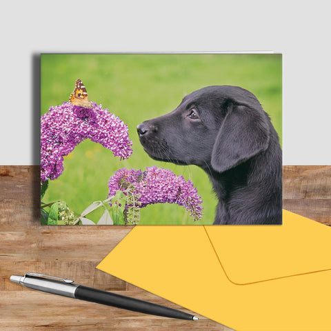 Labrador and Butterfly greetings card - Take time to smell the flowers - Kitchy & Co