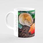 Strawberry Thief Mug - Caught Red Handed - Kitchy & Co